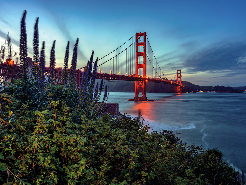 Marriott Vacation Club Pulse<span class='trademark'>®</span>, San Francisco Golden Gate Bridge. Marriott Vacation Club Pulse<span class='trademark'>®</span>, San Francisco is located in San Francisco, California United States.